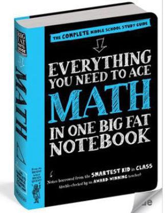 图片 Everything You Need to Ace Math in One Big Fat Notebook - US Edition