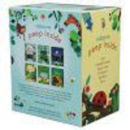图片 Usborne Peep Inside Box Set